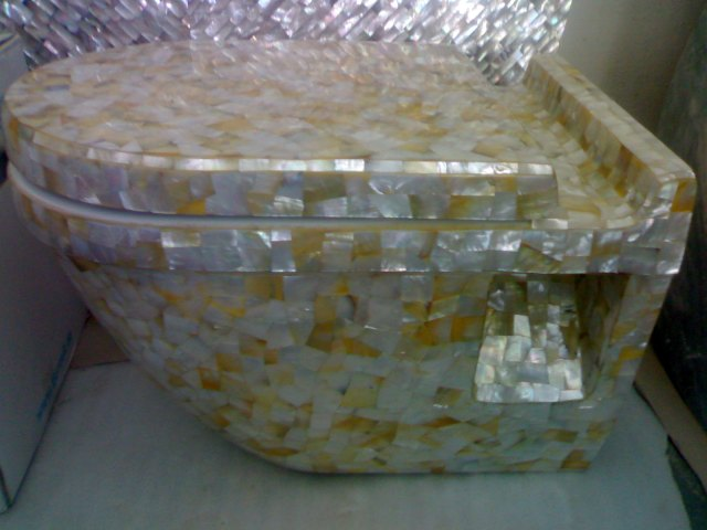 black mother of pearl sink. golden mop commode